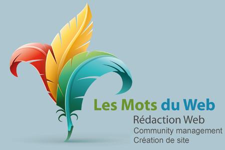 redaction web_ubicom